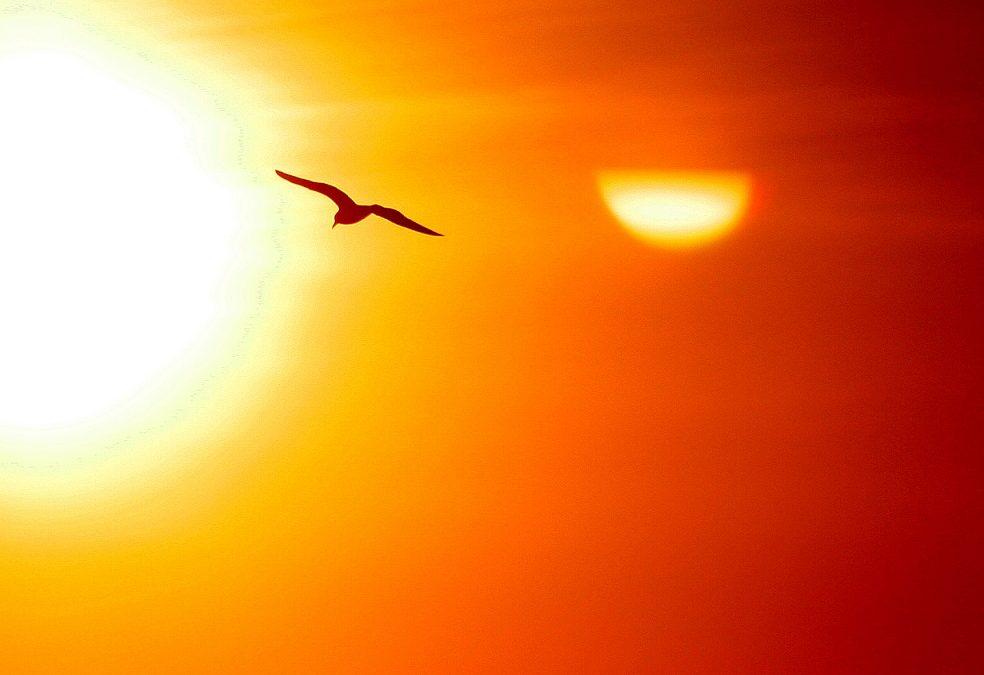 El Impuesto del Sol, un atentado al progreso